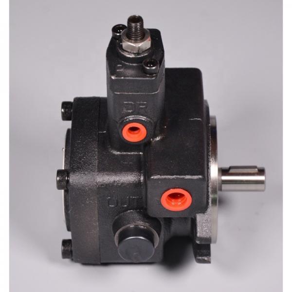 Vickers PV080R1K8T1NFPV+PVAPVV38N20 Piston Pump PV Series #1 image